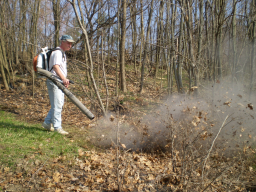 Leaf Blower image from www.ojaipost.com/2008/06/leaf_blower_pros_and_cons.shtml